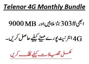 Telenor 4G Monthly Bundle